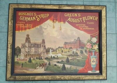 Incredible Rare Boschee's German Syrup And Green's August Flower Canvas...