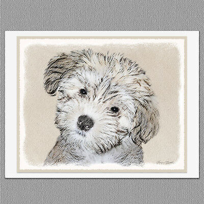 6 Havanese Puppy Dog Blank Art Note Greeting Cards