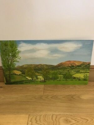 Vintage Original Oil On Board Painting, Vera lamb,Vale Of Clwyd Countryside, ❤️