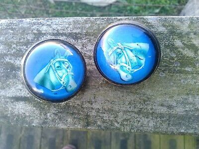Antique Glass Domed Bridle Harness Rosettes Horse Head Blue