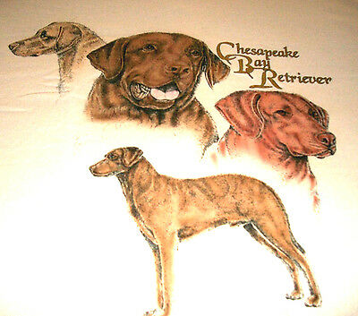 "Chesapeake Bay Retriever T-shirt "" Natural "" Small ( 34 - 36 )"