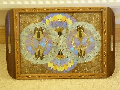 Vintage South American Iridescent Butterfly Wing Art Wooden  Tray Inlay Border