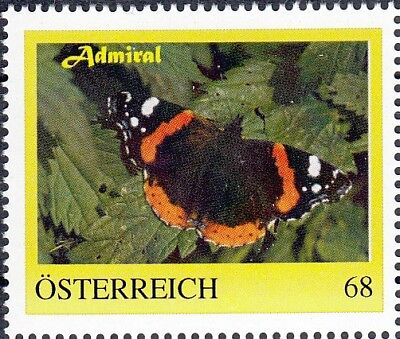 PM 8116371 Schmetterling ADMIRAL butterfly