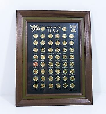 Lincoln Cent Collection Framed Collector Framed