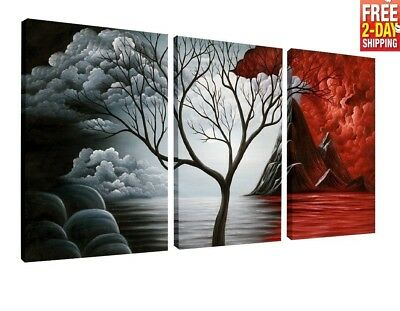 Canvas Print Framed Home Decor 3 Pcs Abstract Wall Art Picture Gift Hang