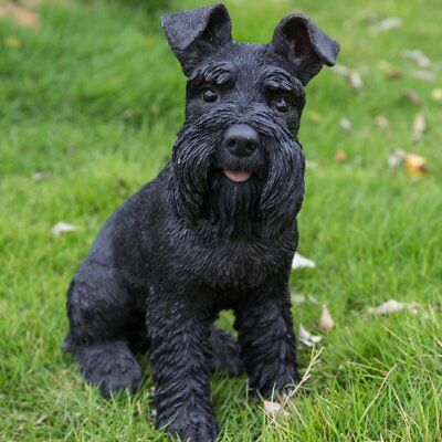 Schnauzer Black  Adult Dog Sitting Garden Statue Realistic Life Like Detail