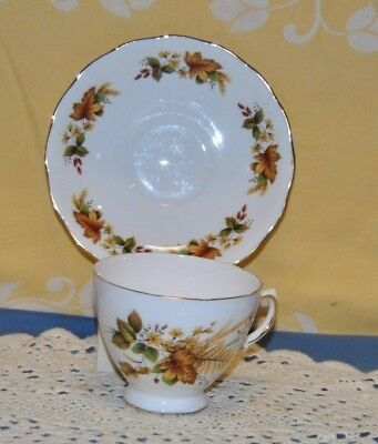 Beautiful Vintage,  Queen Anne,  Fine Bone China, Tea Cup And Saucer