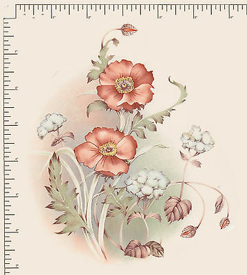"""1 x Large Poppy Flowers Floral Waterslide ceramic decal Approx 6 1/2"""" x 5"""" PD991"""