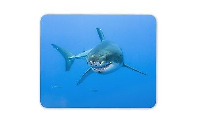 Great White Shark Mouse Mat Pad - Scuba Diving Diver Cool Gift PC Computer #8391