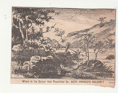 Dr Seth Arnold's Balsam Mountains Gilman Bros Doctor Puzzle Vict Card c 1880s