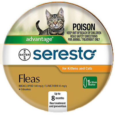 Seresto flea collar for kittens and cats