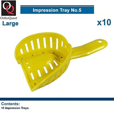 10 OrthoQuest Dental Impression Plastic Trays Model Material orthodontic Large