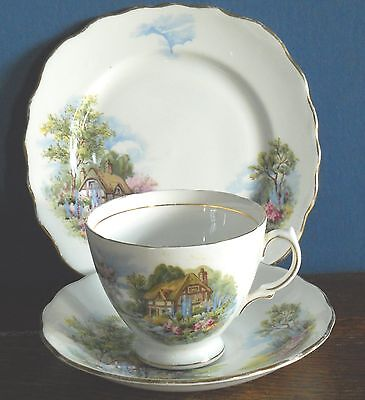 A Vintage Royal Vale bone china trio in Cottage Garden pat no # 7382