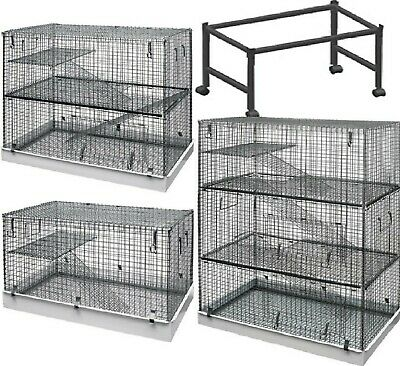 METAL CAGE - (1 / 2 / 3 Storey) - Lazy Bones Degu Ferret Rat Chinchilla dm Stand