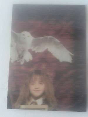 World Of Harry Potter 3D Puzzle Chase Card PZ3