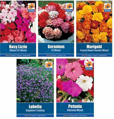 5 PACKETS of BEDDING SEEDS - Petunia, Geranium, Marigold, Busy Lizzie, Lobelia