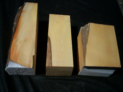 Pack of Large HUON PINE Carving / Craft Blanks