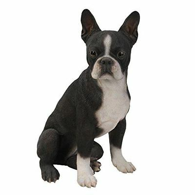 Large Sitting Boston Terrier Statue With Glass Eyes Hand Painted Figurine Resin