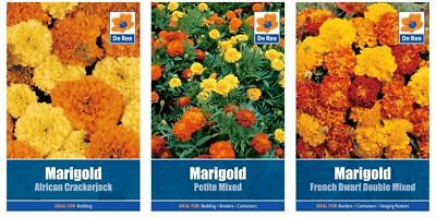 3 PACKETS of MARIGOLD SEEDS, Petite, French Dwarf Double, African Crackerjack