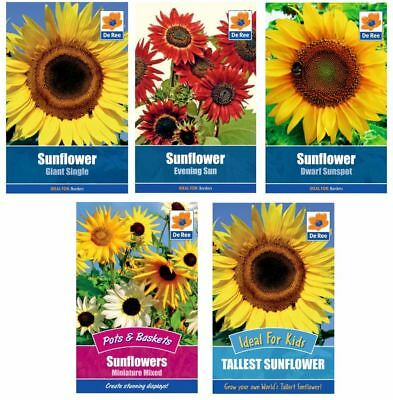 5 PACKETS of SUNFLOWER SEEDS, Dwarf, Evening, Giant, Tallest, Mini