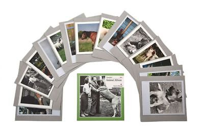 Animal Album, Memory / Reminiscence activity cards for Dementia, Alzheimer's