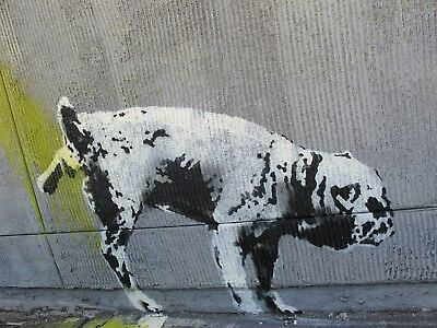 Banksy Framed Canvas Street  graffiti Urban  Art Print dog pee ready 2 hang