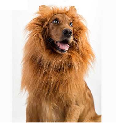 Funny Lion™ Dog Costume | Lion Mane Dog Costume