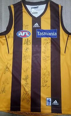 Signed Hawthorn Guernsey, 2018 Team, 20 sigs! Free post! Proof!