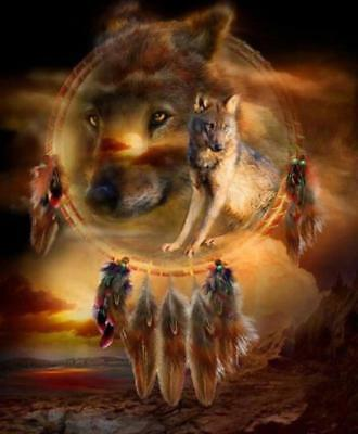 Native American Dream Catcher Prairie Wolves Amazing Borderless 8.5x11 Matte Art