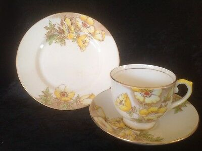 Antique Salisbury Floral Trio Cup, Saucer and Side Plate