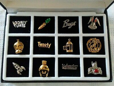 Rare 12 Looney Tunes Character Pins Box Set w/Case From Warner Bros Studio Store