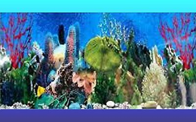 AQUARIUM BACKGROUND POSTER - TROPICAL REEF - 50cm or 60cm(H) - BUY by METRE