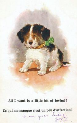 Dog Postcard PC Fox or Jack Russell Terrier Puppy Wants Loving in French c1920s
