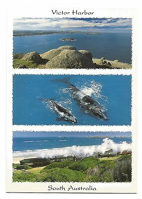 SA - c2000s POSTCARD - VIEW OVER ENCOUNTER BAY FROM BLUFF LOOKOUT, VICTOR HARBOR