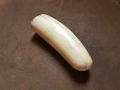 1890's Faux Resin Inuit Whale Tooth