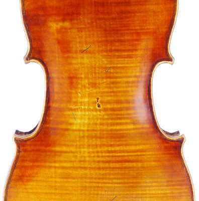 Rare, antique CARLO SCHIAVI Italian labeled old 4/4 violin - fiddle, geige