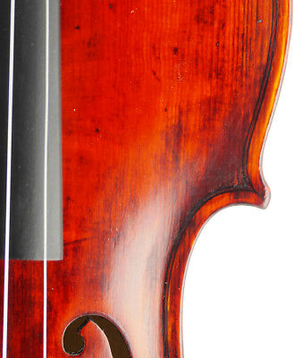 Nice, antique Nicola Segizo Italian labeled old 4/4 school violin - fiddle,geige