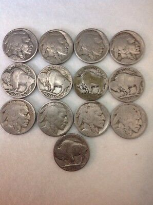 13 NO DATE Buffilo Nickels