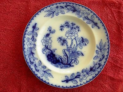 c 1850 BLUE & WHITE ANTIQUE KAOLIN WARE PLATE THOMAS DIMMOCK RARE BAMBOO PATTERN