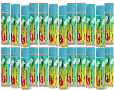 Carmex Winter Mint Lip Balm Chapped Stick Moisturizer .15oz -24 Pack (24 Sticks)