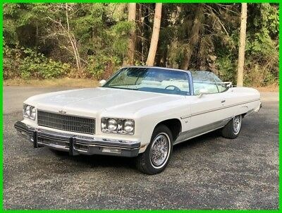 1975 Chevrolet Caprice  1975 Used Automatic Convertible