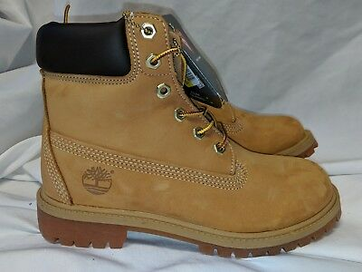 Timberland 6 Inch Premium Waterproof Winter Boot Wheat Classic 12909M Juniors 5