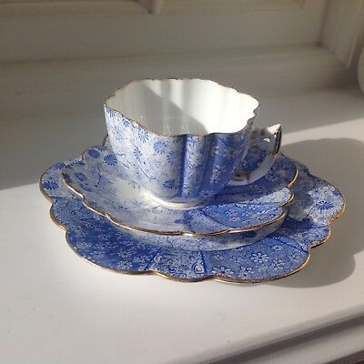 Shelley Wileman Foley Jungle print cup, saucer, side plate