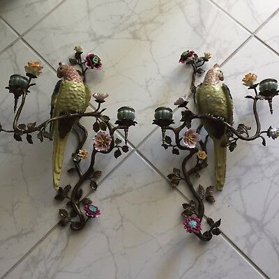 Outstanding Pr. Parrot Omolu & Porcelain Wall Sconces Excellent