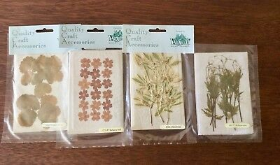 Vintage Dried Flowers Quality Craft Accessories Packed By Yarra Valley 4 Packs
