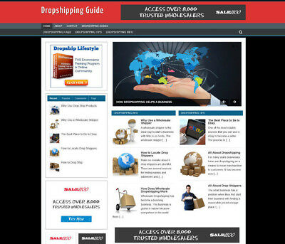 4099eec64c2f1 Dropshipping Advice Website With Affiliate Store - Professional Design
