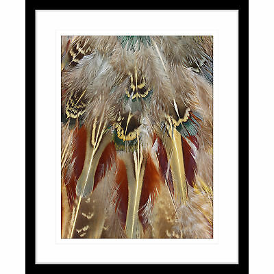 NEW Gather & Nest III Framed Print Innovate Interiors Wall Art