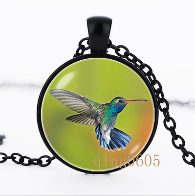 Colibri necklace Bird photo Glass Dome black Chain Pendant Necklace wholesale