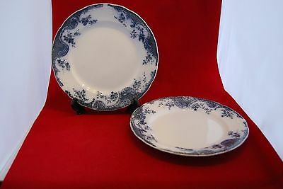 TWO blue and white DINNER PLATES about 10 inches diameter. Unknown origin
