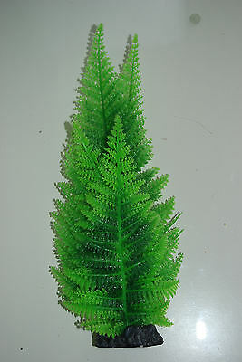 Aquarium Broad Leaf Green Fern Plant 30 cms High Suitable For All Aquariums